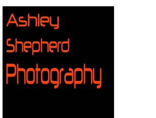 Ashley Shepherd Photography