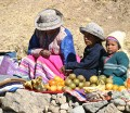 Colca Canyon, road-side fruit sellers
